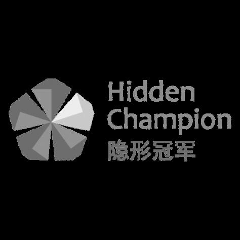 logo hidden champion